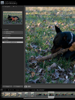 Lightroom 2.1